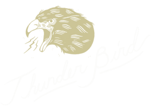 thunderbird-logo-rev